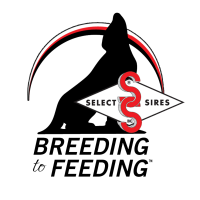 BreedingToFeeding 0