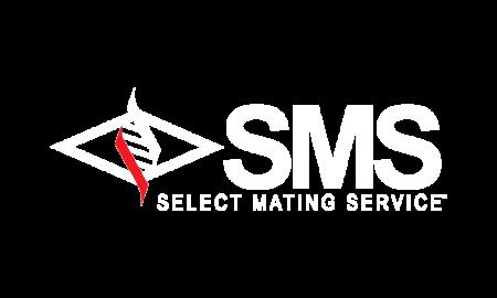 SMS 0 big 1