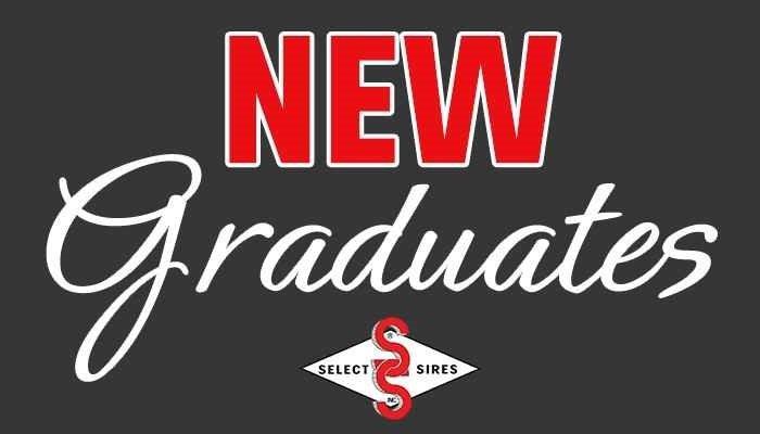 New-Grad