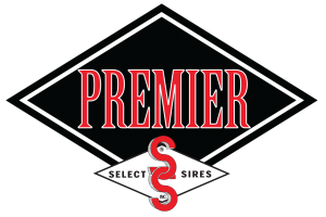 Premier Logo lrg e1545411946955