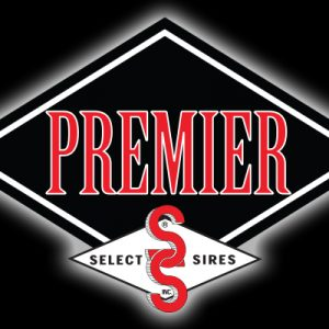 Premier Select Sires Merger Brings Premier Opportunities for Cooperative's Member-Owners