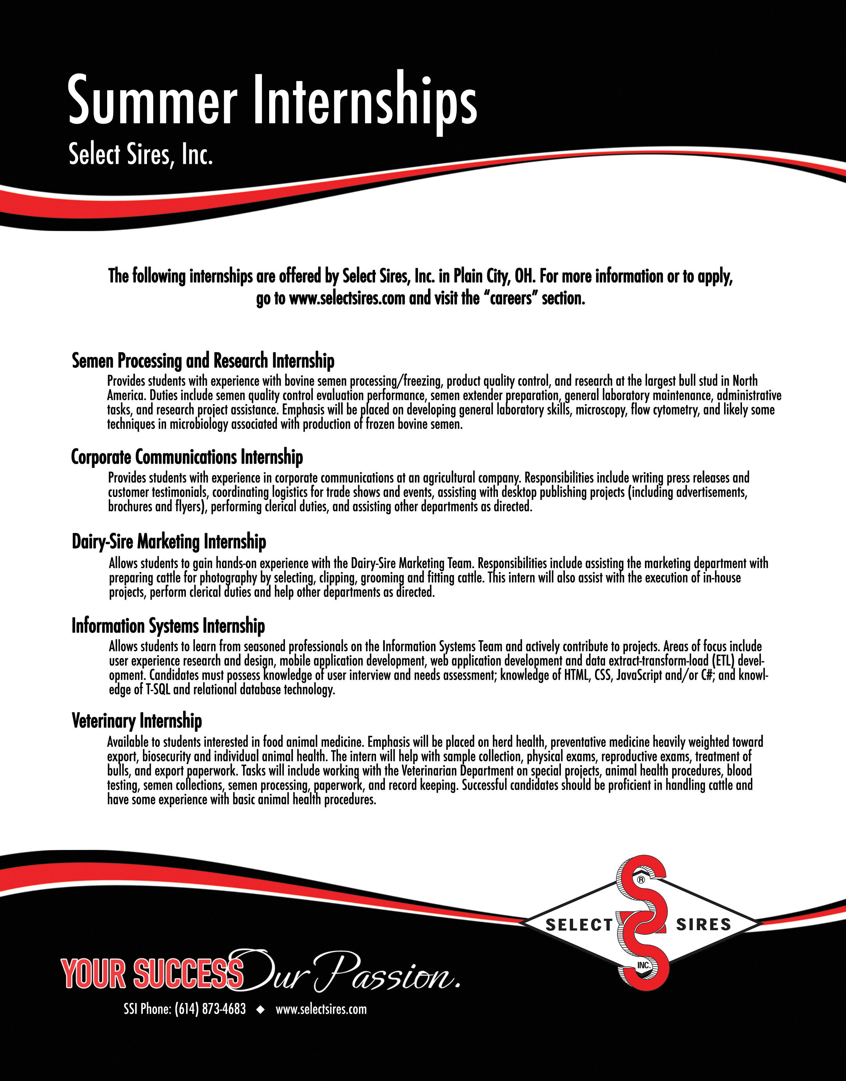 SSI Internship Flyer WEB