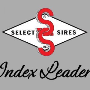 Index Leaders for Production, Wellness, Type and More