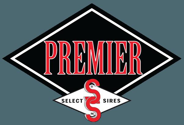Premier-Logo-lrg-e1545411946955
