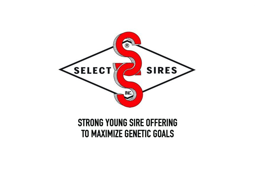 Strong Young Sire Offering to Maximize Genetic Goals