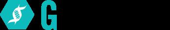 GForce_widelogo