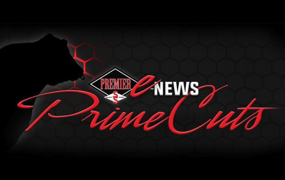 PrimeCuts Newsletter: November 2020