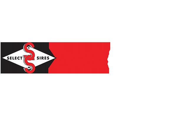 ProfitSOURCE